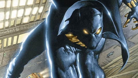 Image for The History of the Black Panther: 1997-1998