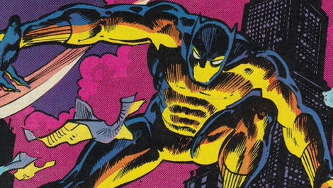 Image for The History of the Black Panther: 1979-1980