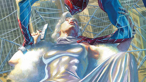 Image for Amazing Spider-Man: The Lady in Silver
