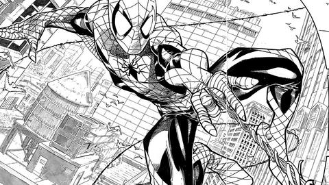 Image for Spectacular Spider-Man Sketchbook