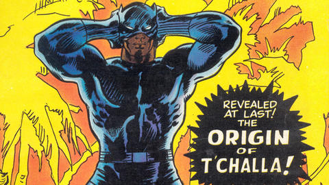 Image for The History of the Black Panther: 1971-1972