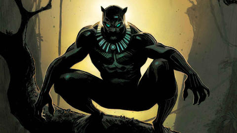 Image for Black Panther: Panthers Past