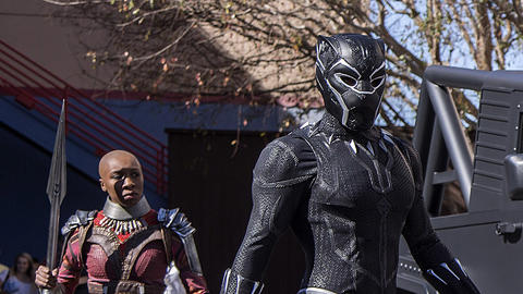 Image for Black Panther Now Appearing at Disney California Adventure Park