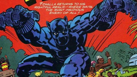 Image for The History of the Black Panther: 1977-1978