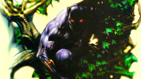 Image for Follow the History of the Black Panther Pt. 27