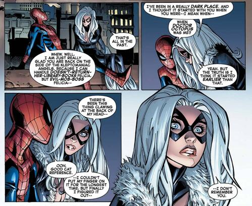 Black Cat with Peter Parker