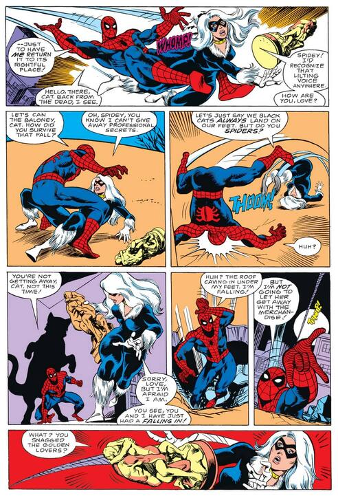 Spidey tussles with Black Cat