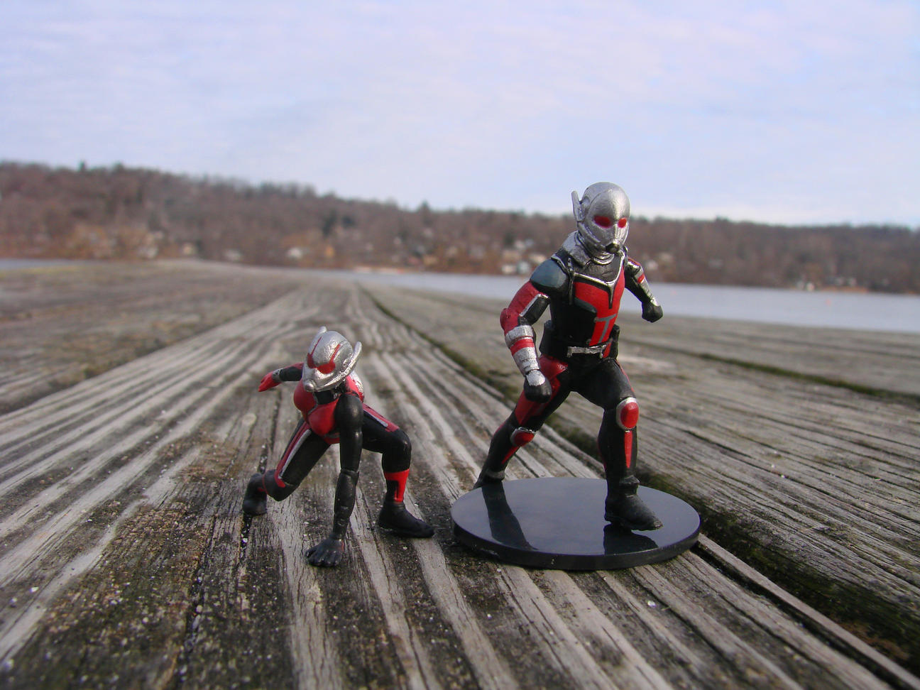 Ant-Man and the Wasp Diamond Select figures