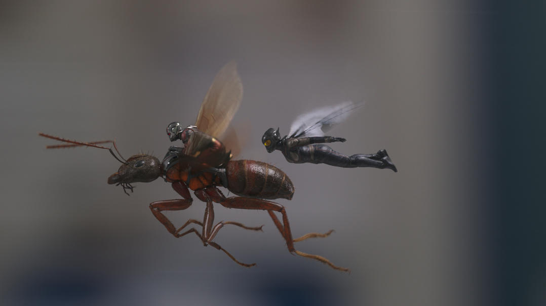 Ant-Man and the Wasp in flight