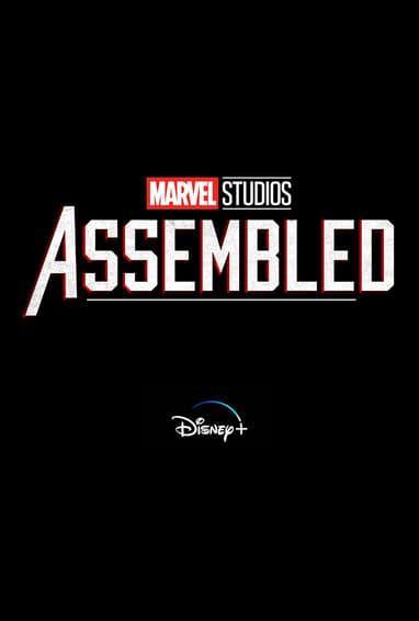 Marvel Studios: Assembled Disney Plus TV Show Season 1 Logo on Black