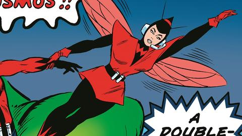 Image for Kirby 100: The Wasp