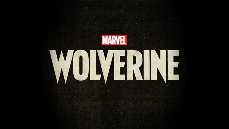 Marvel's Wolverine Game Logo on Black