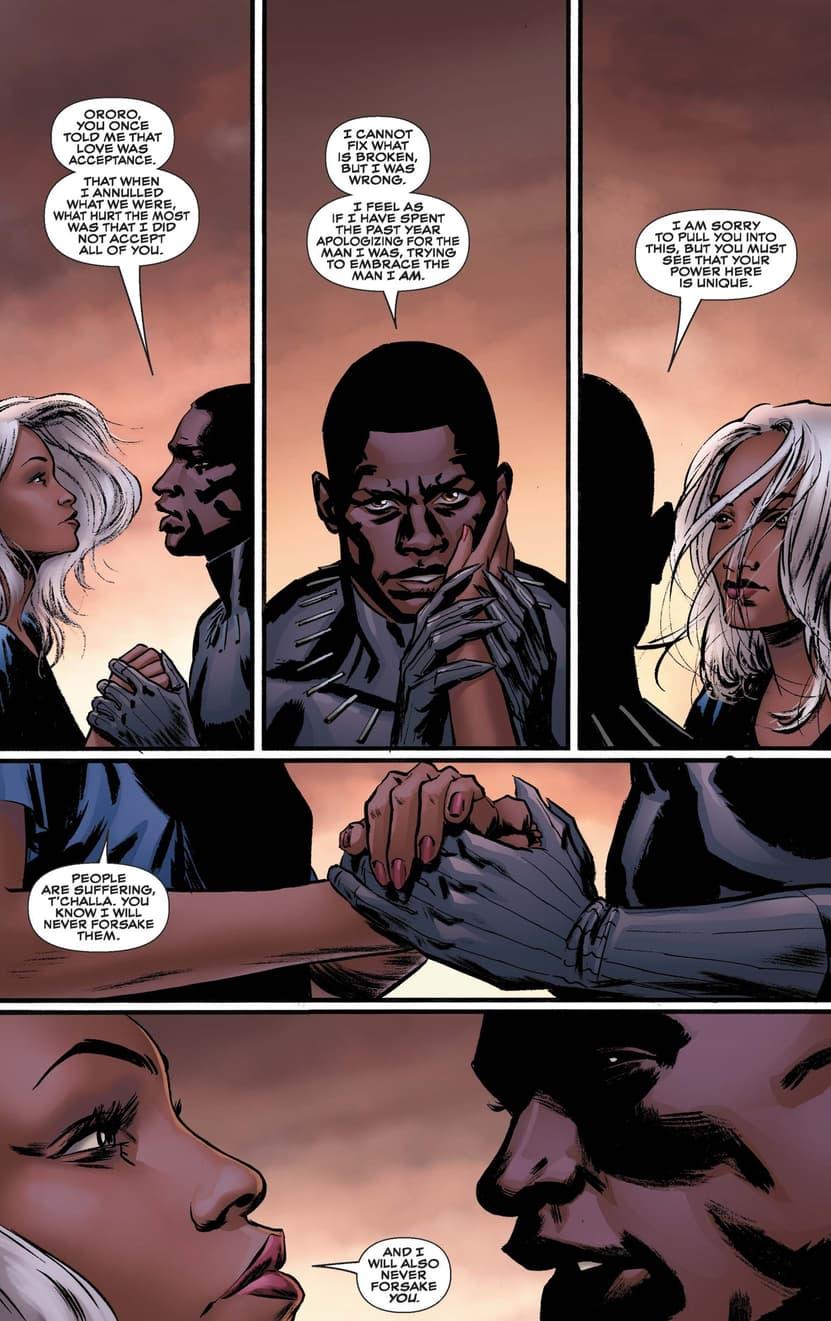 Black Panther/Storm