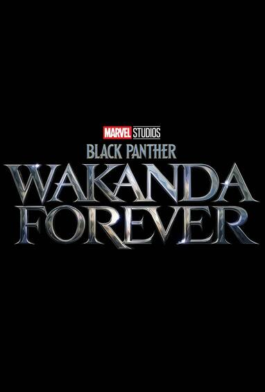 Marvel Studios Black Panther: Wakanda Forever Black Panther 2 Movie Logo on Black