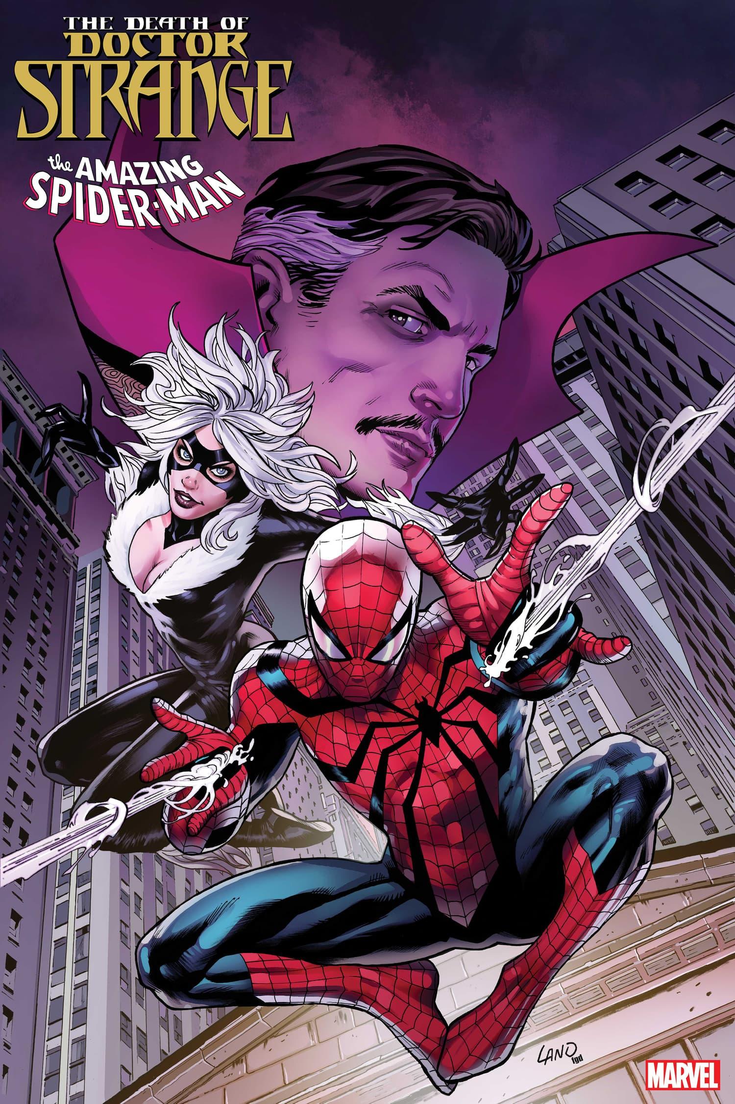 Death of Doctor Strange: Spider-Man