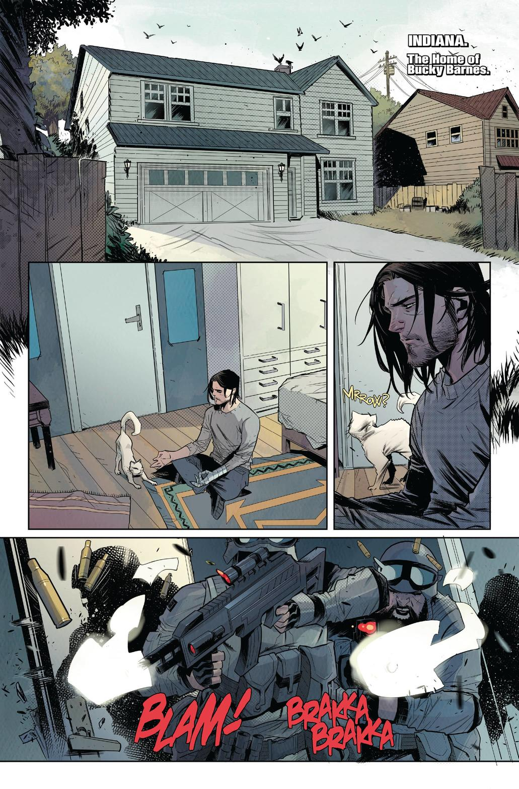Falcon and Winter Soldier #1
