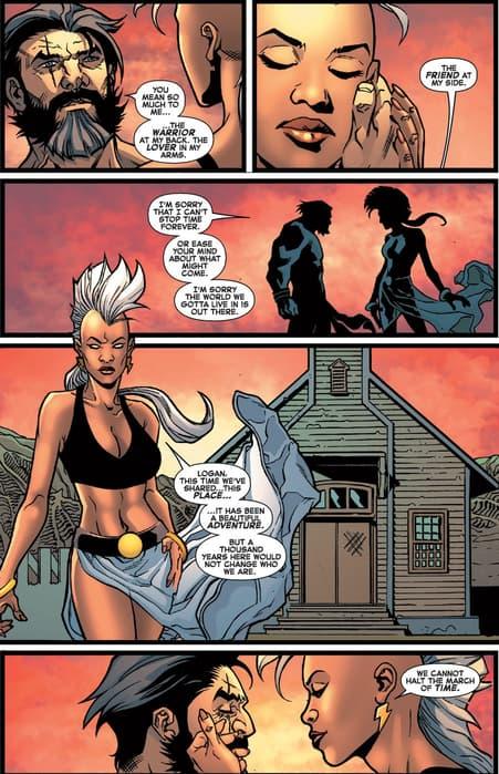 Storm/Wolverine